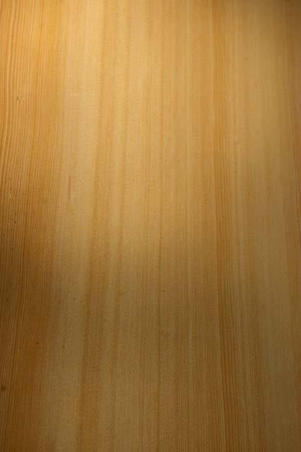 Blacktail Enterprises Rain Forest Sawmill Softwood